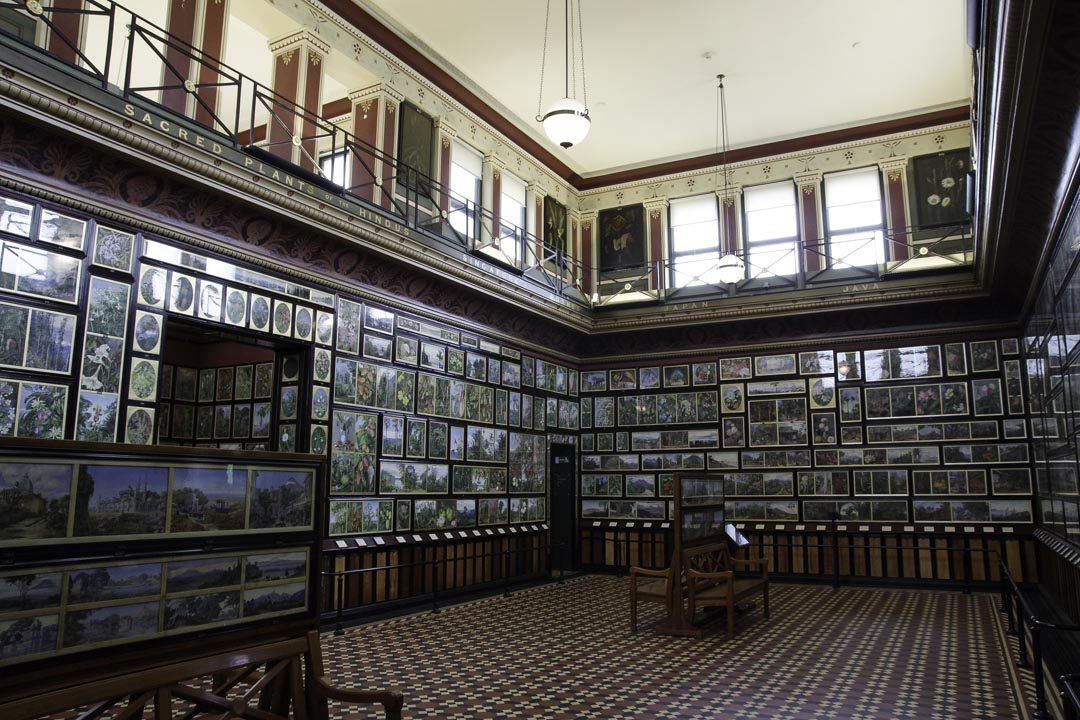 Galerie d'Art Botanique de Kew Garden