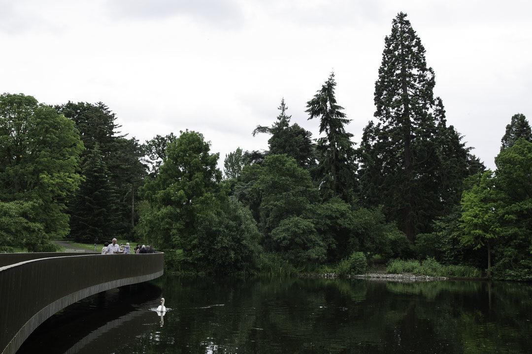lac de Kew Garden