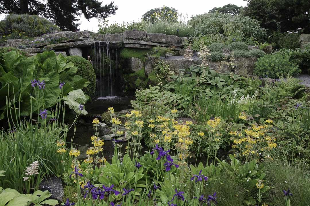 Rock Garden - Kew Garden