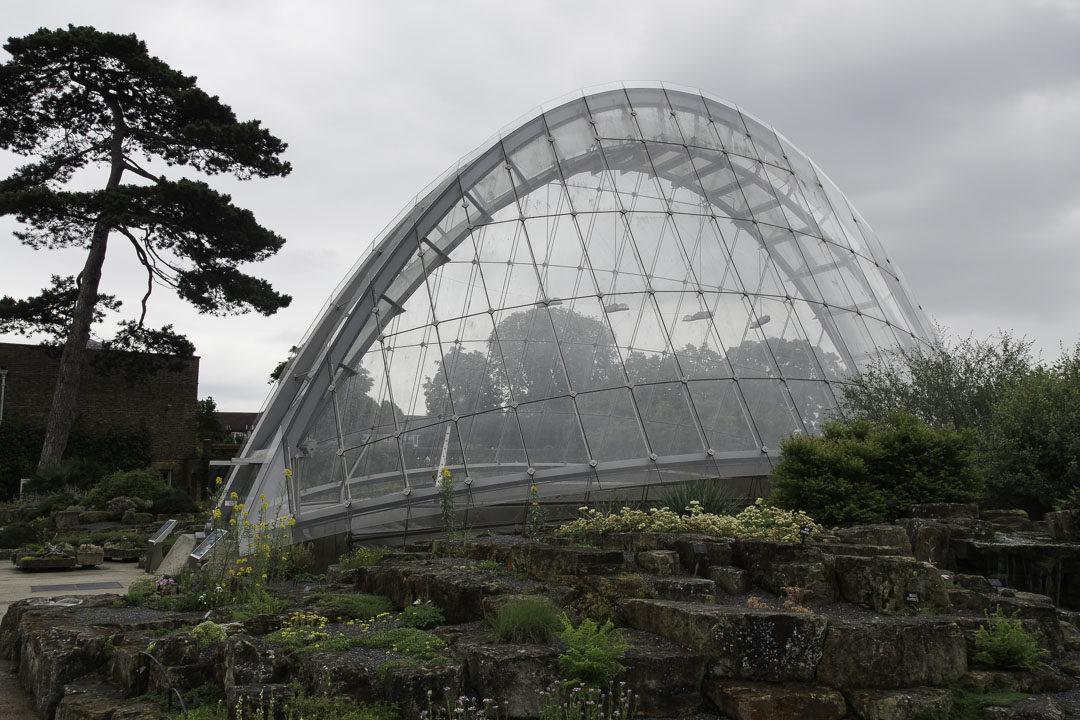 Serre Alpine - Kew Gardens