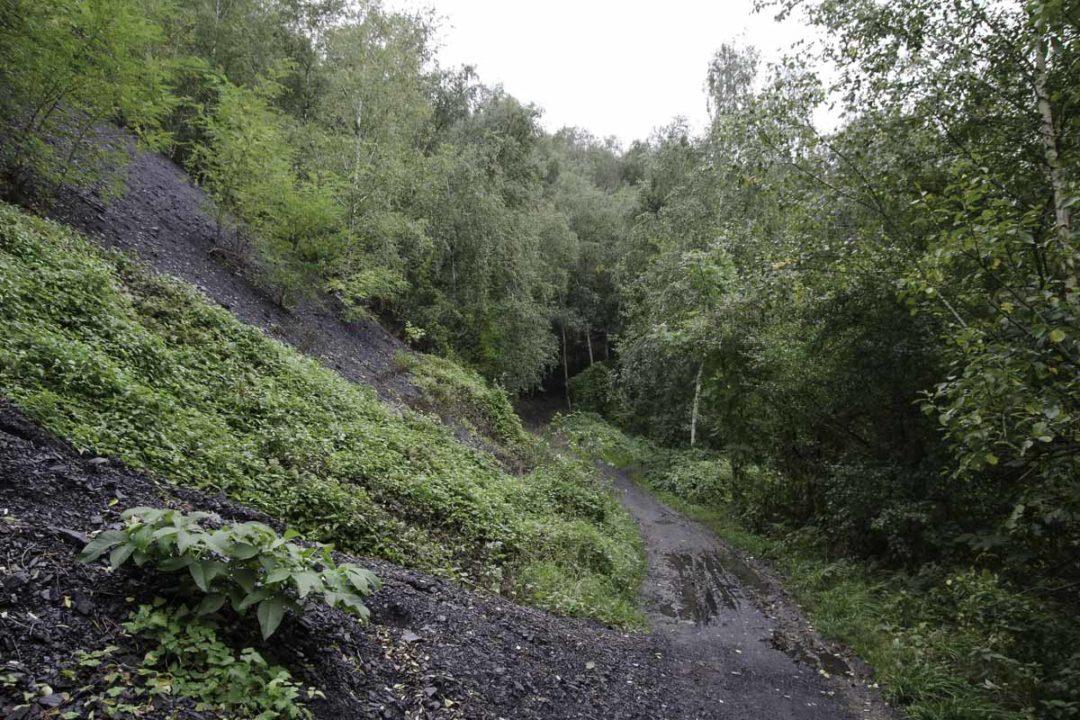 Sentier du Biotope du Terril