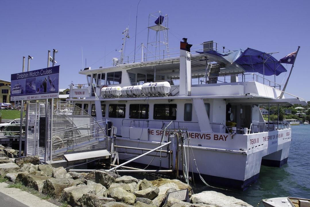 bateau de l'excursion Dolphin Watch Cruise