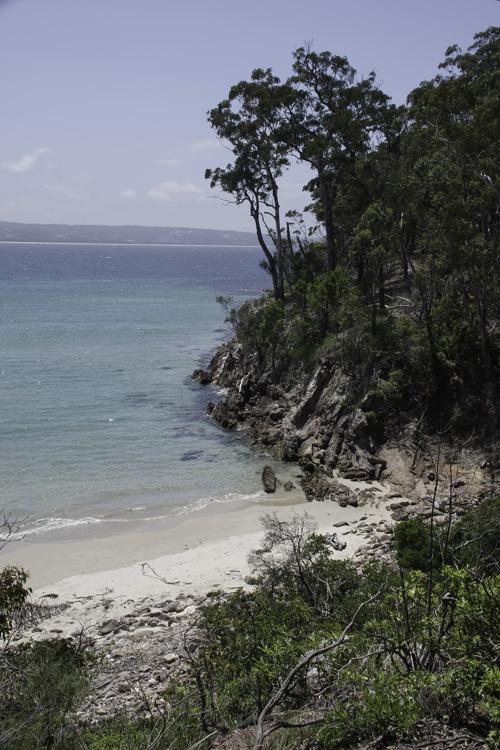 paysage de la cote australienne près d'Eden
