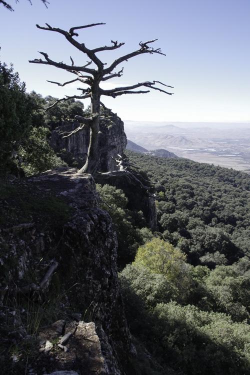 la falaise d'Azrou