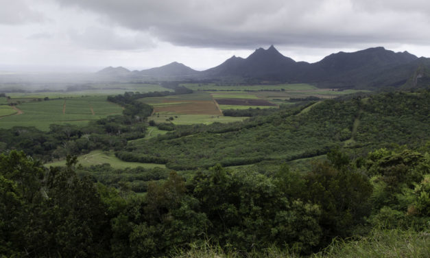 7 choses incontournables à voir dans le Nord de l'Ile Maurice