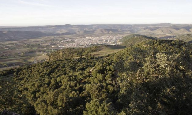 2 jours de randonnée au Parc National d'Ifrane