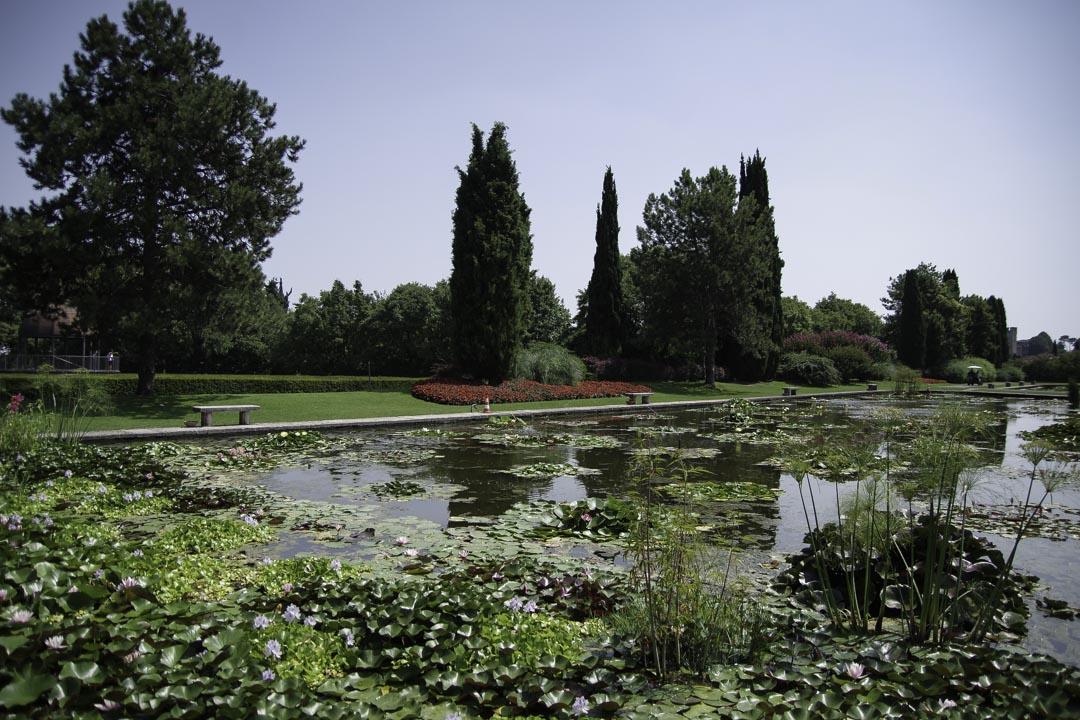 Bassin Parc - Jardin Sigurta