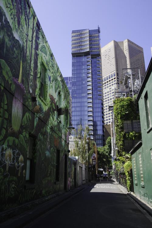 Fresque de Street Art à Melbourne