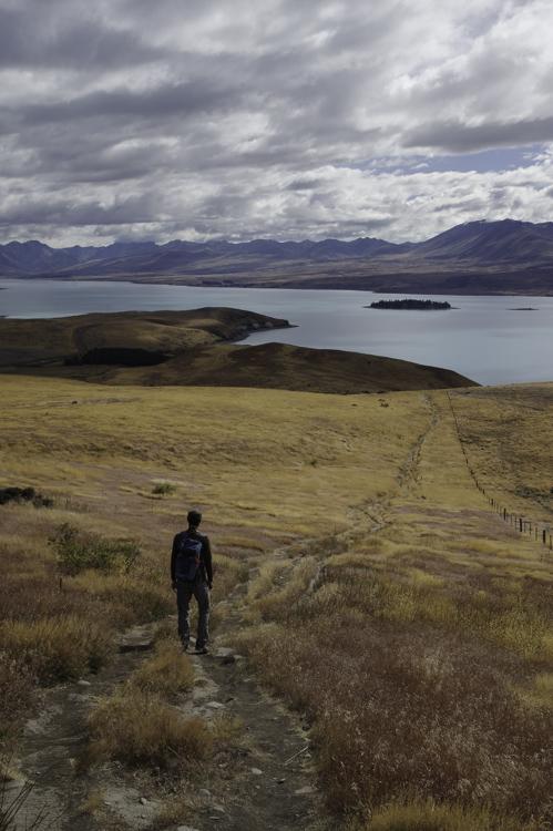 Randonnée sur les hauteurs du lac Tekapo
