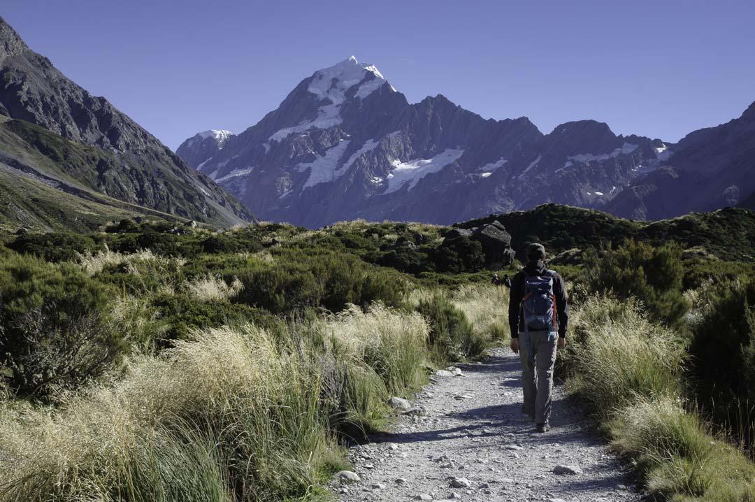 randonnée avec le Mont Cook en arrière plan