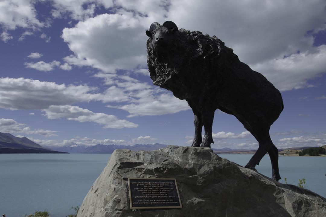 statue de mouton - lake pukaki