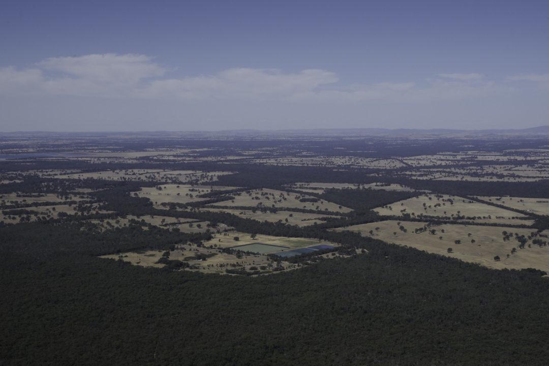 Boronia Lookout : vue sur la plaine