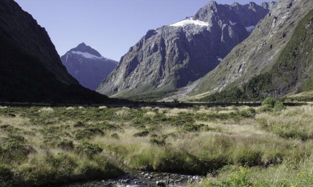 Visiter le Fiordland National Park en 2 jours : de Te Anau à Milford Sound