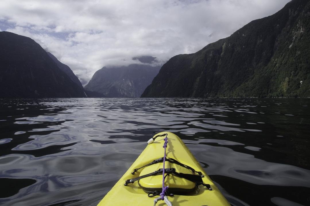 Kayak à Milford Sound