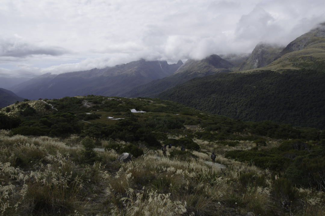 Randonnée Key Summit : Alpine Nature Walk