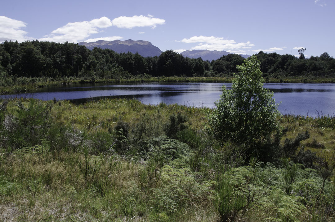 lac Mistletoe - Fiorland National Park