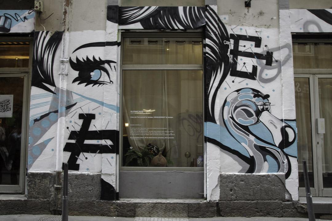 Street art sur les pentes de la croix rousse