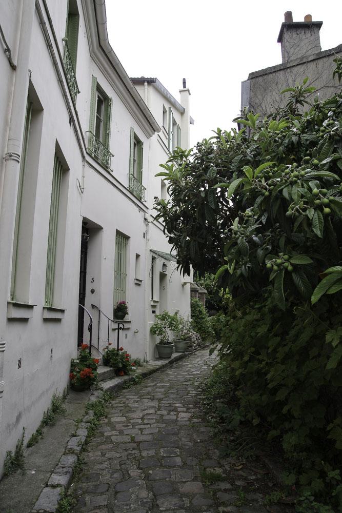 Villa Hallé
