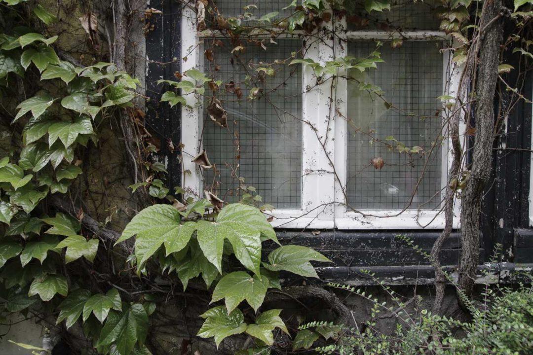 Détail impasse de la villa vassilief à Paris