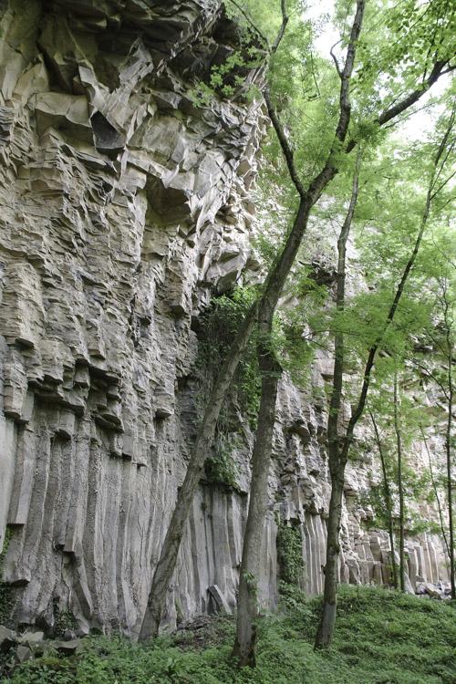 Randonnée autour de la coulée basaltique de Sant Joan