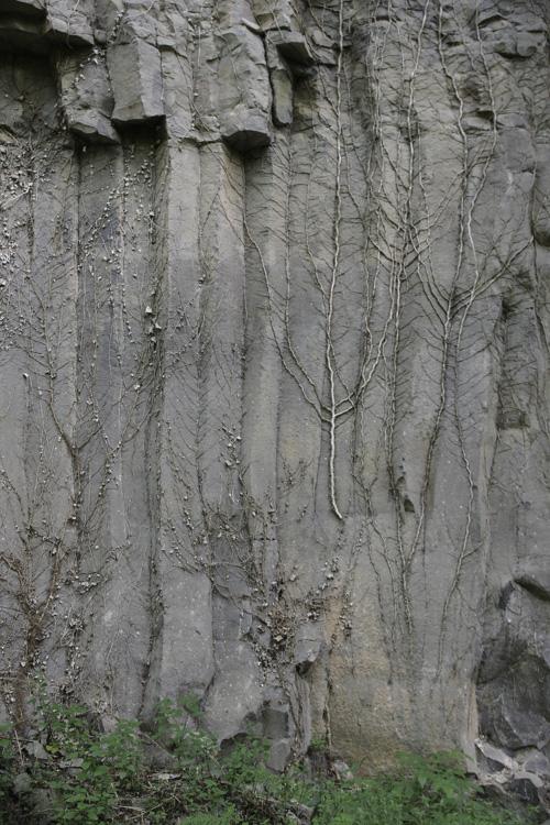 colonne de basalte