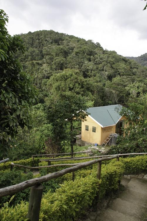 Gorilla Valley Lodge - Bwindi