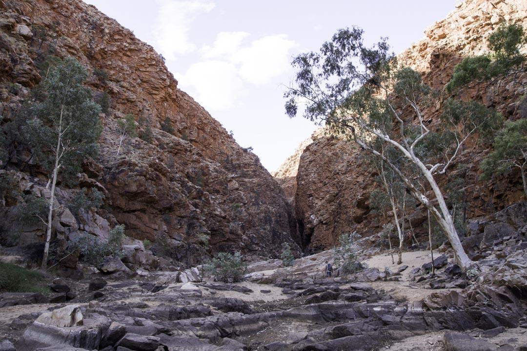 Randonnée Redbank Gorge