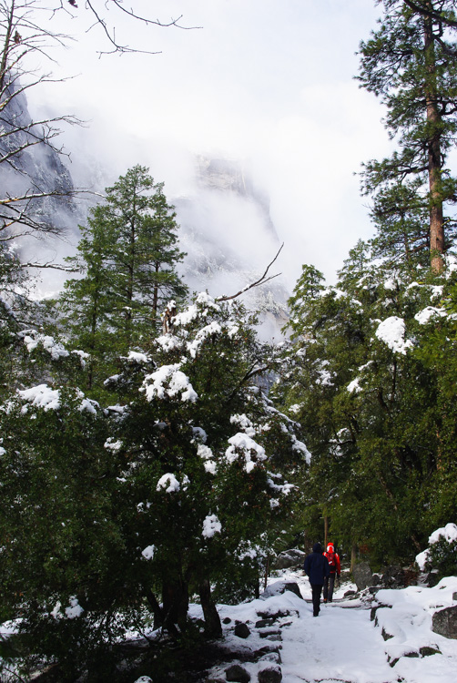 Randonnée Miror Lake - Yosemite