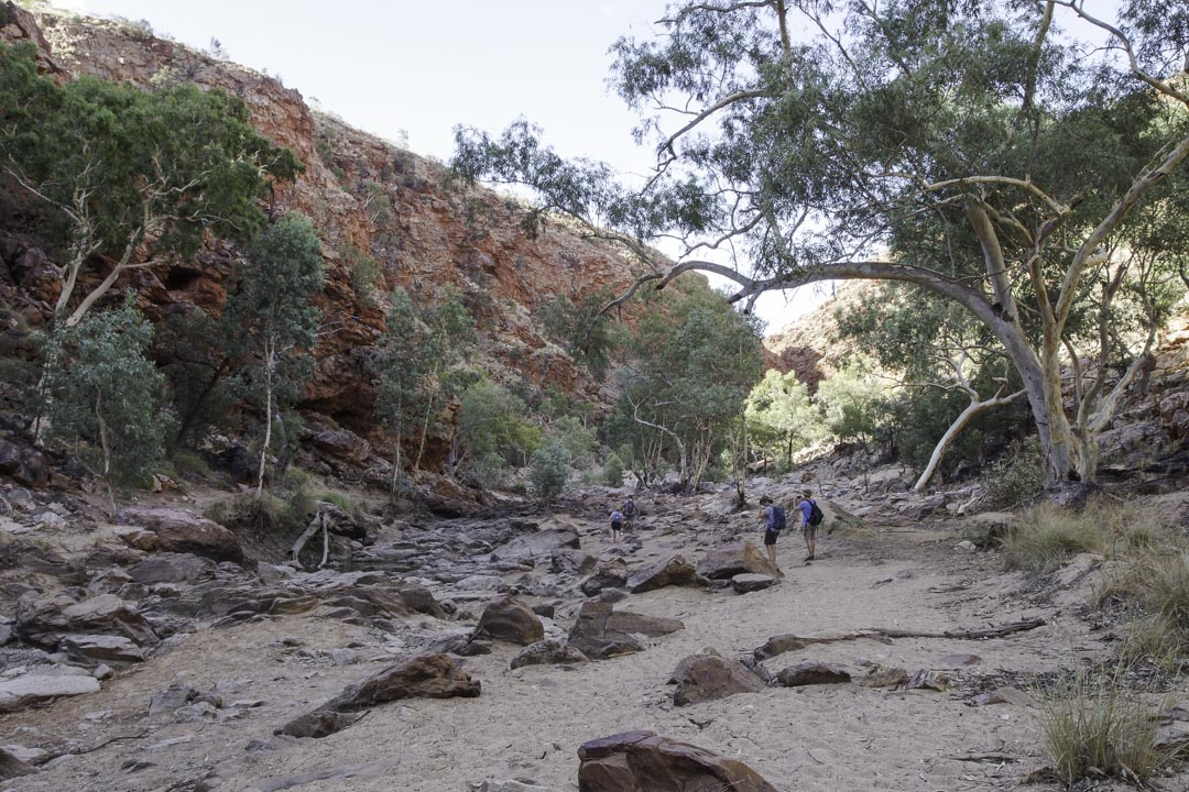 randonnée à Redbank Gorge