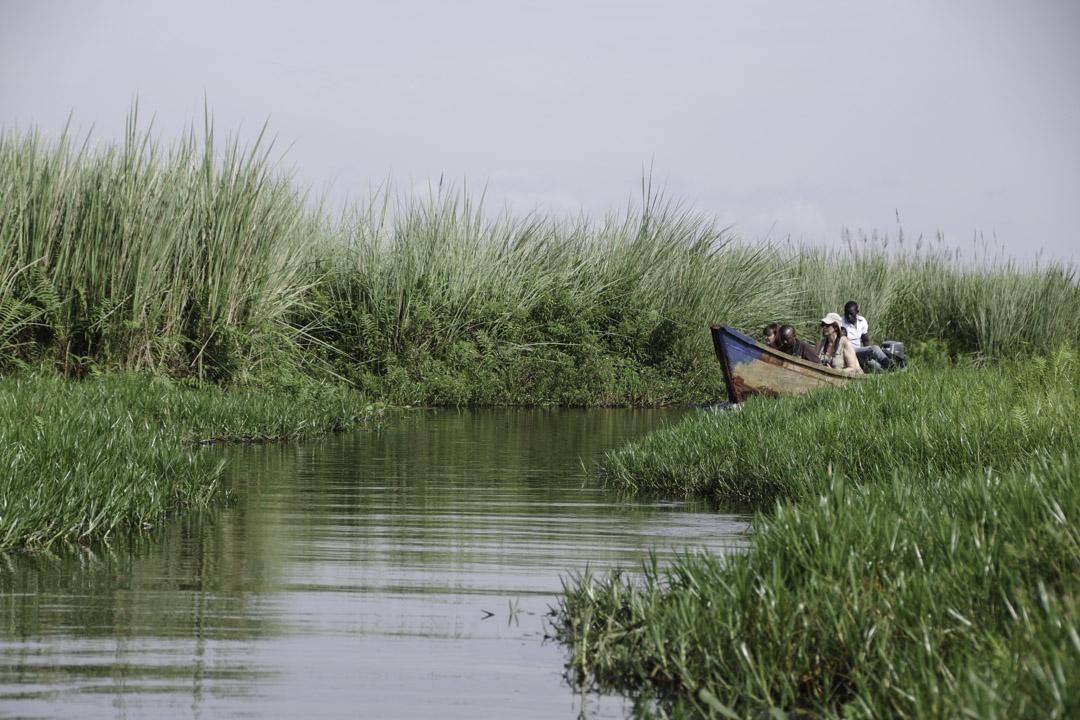Visite du Marais de Mabamba en barque