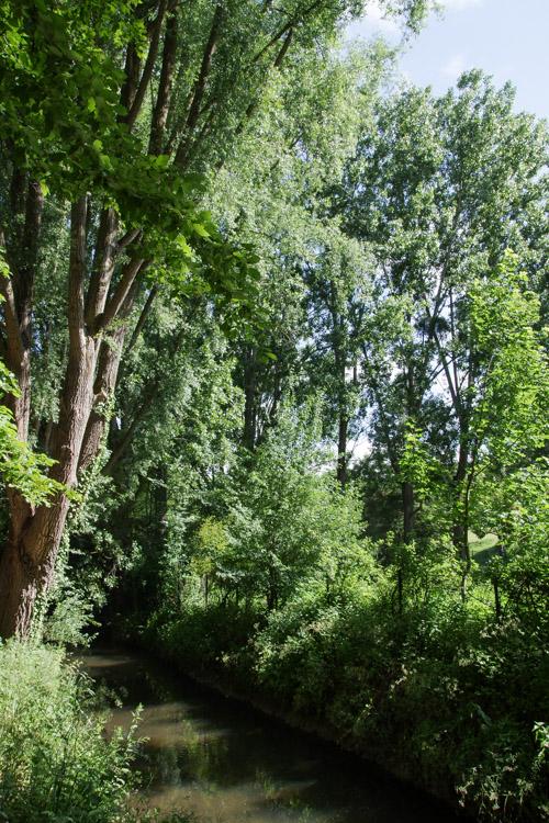 Vallée de la Bievre