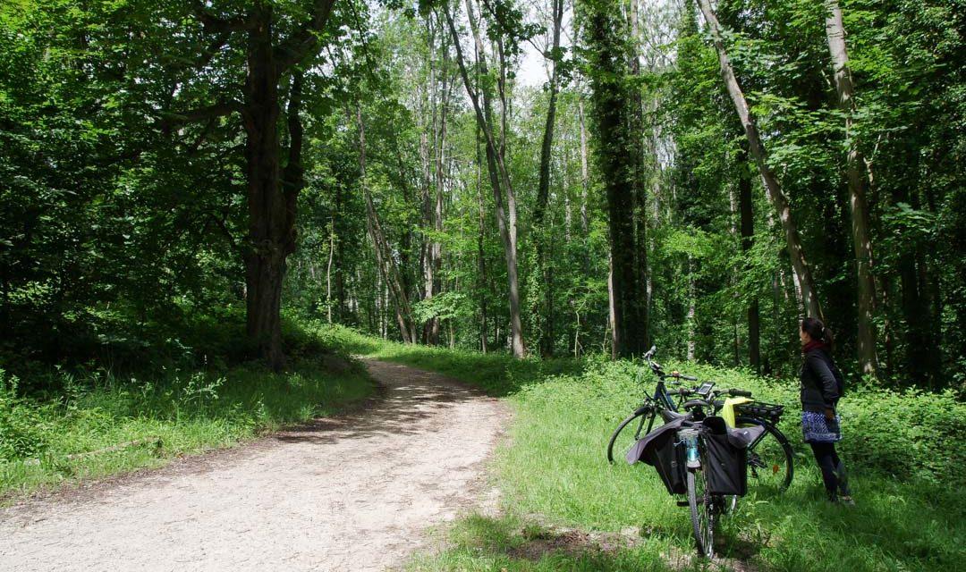 La Véloscénie en Ile-de-France