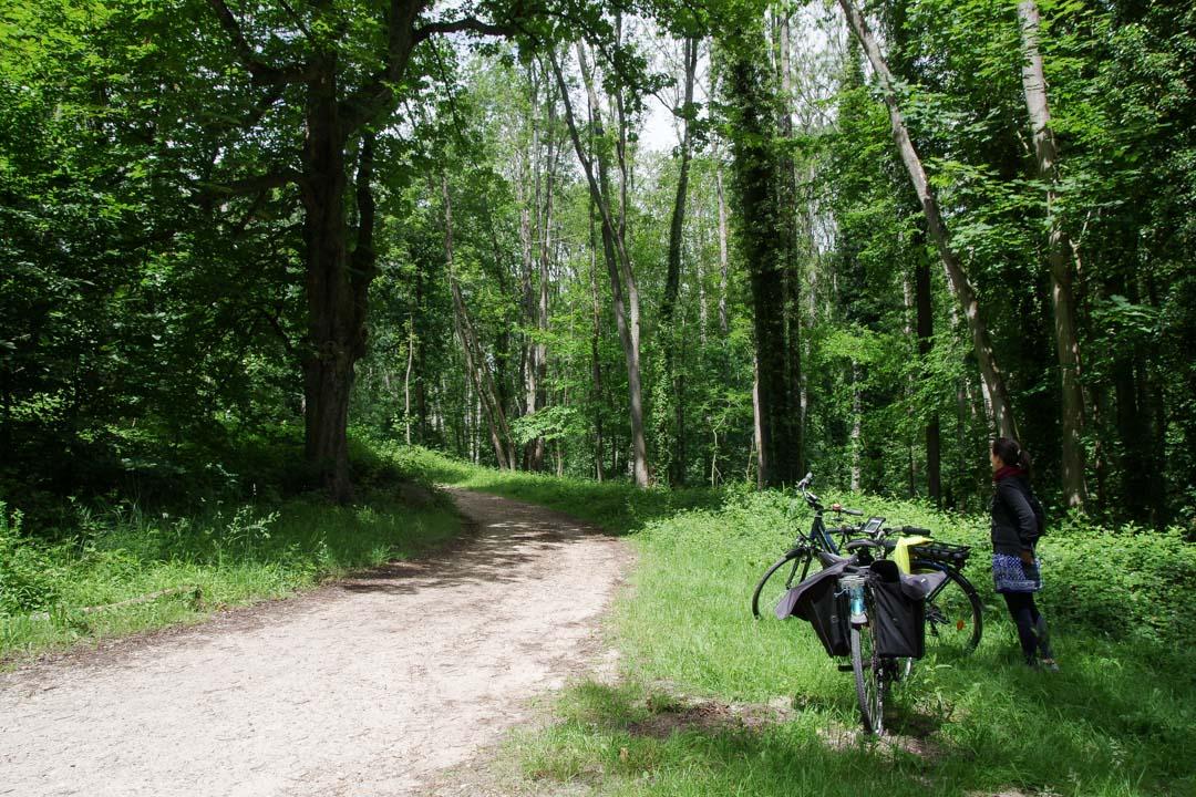 Itinéraire de la Véloscenie en Ile de France