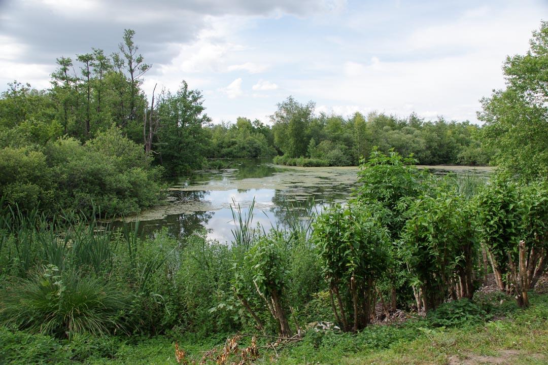 Parc d'Isle - Saint-Quentin