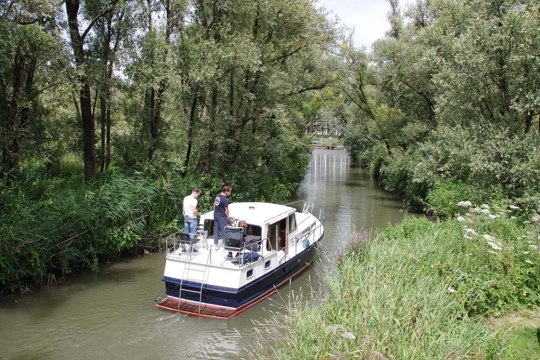 Explorer le Biesbosch en Bateau