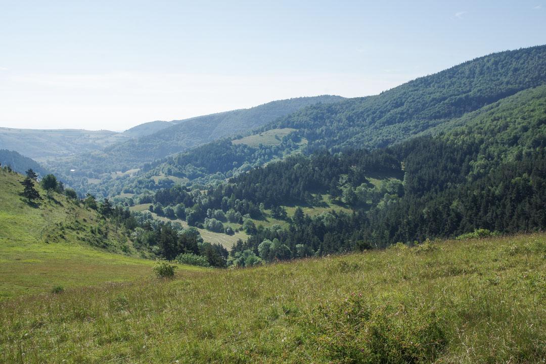 Panorama sur les Cévennes en Lozère