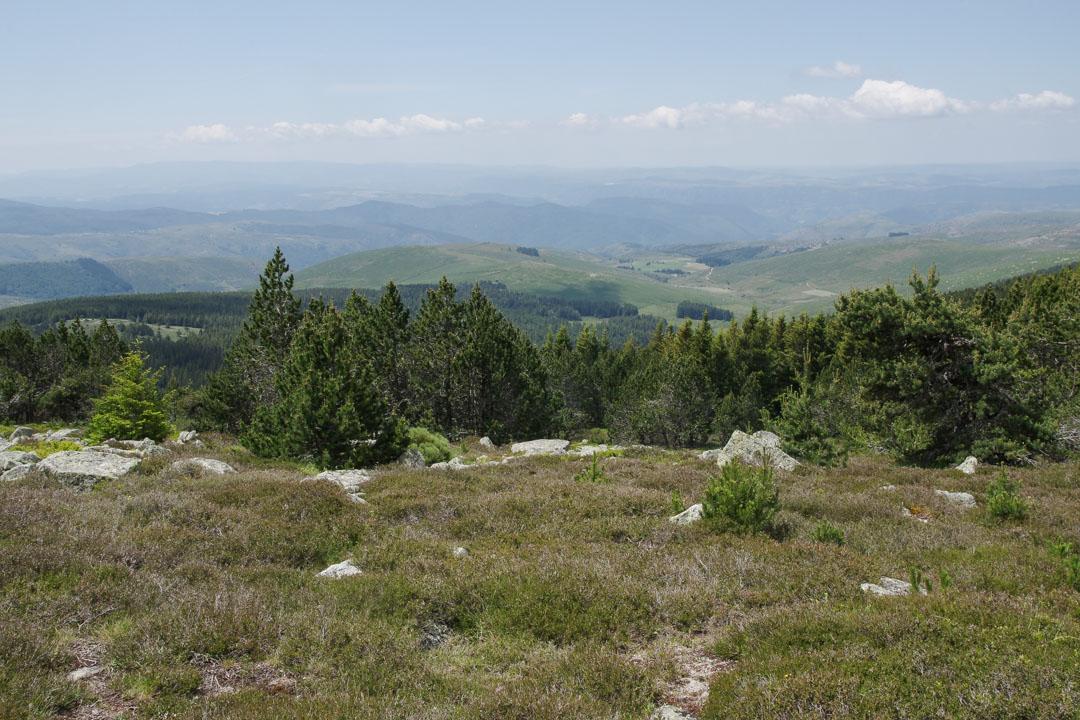 redescente du Mont Lozère