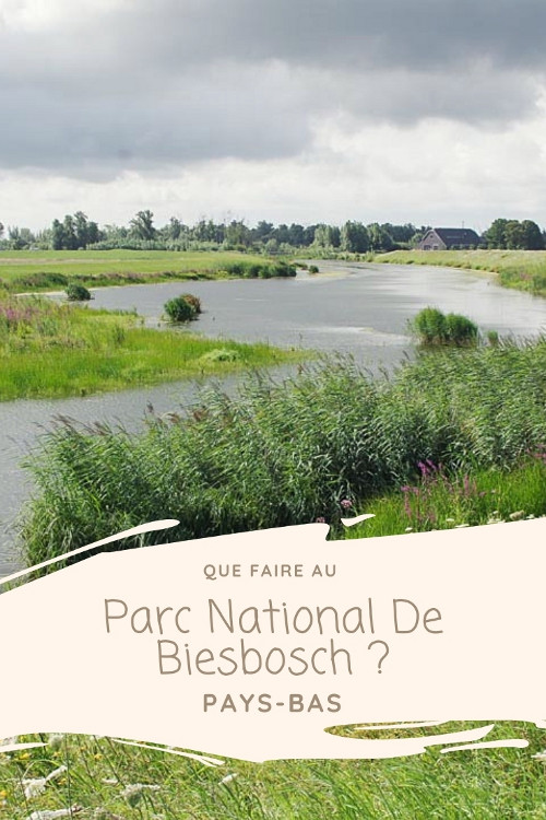 Que faire au Parc National de Biesbosch en Hollande ?