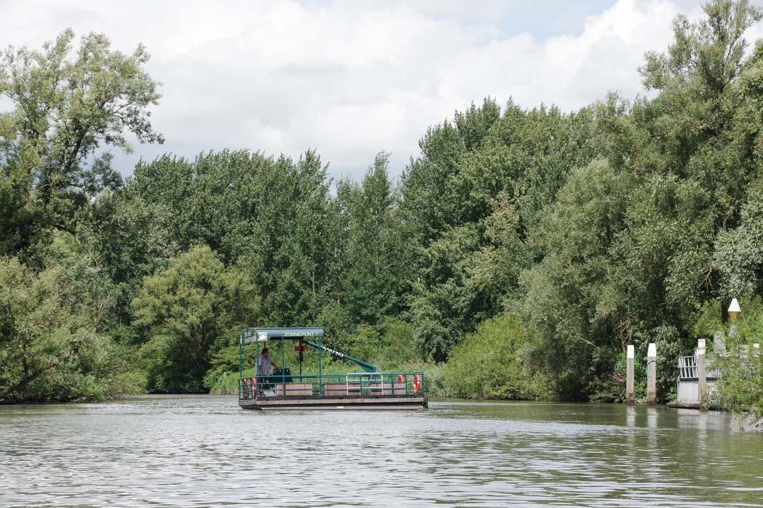 Bac pour pieton - Biesbosch