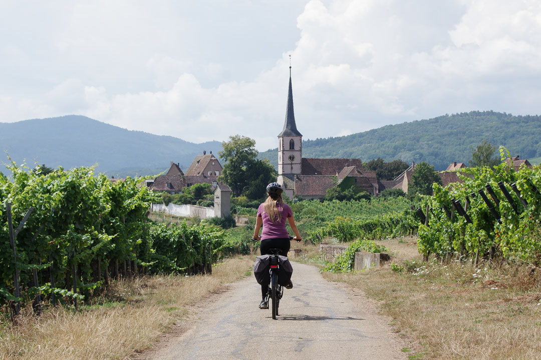 cyclotourisme sur la véloroute des vignobles d'Alsace
