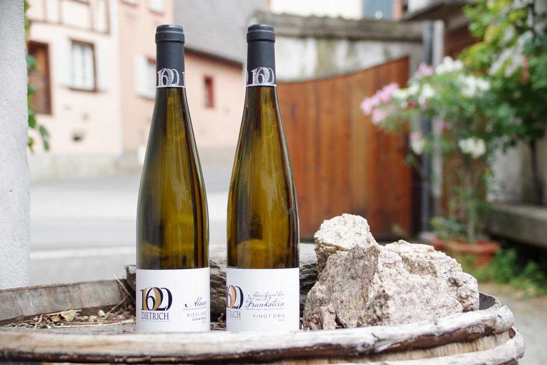 Dégustation des Vins Dietrich à Dambach-la-Ville en Alsace