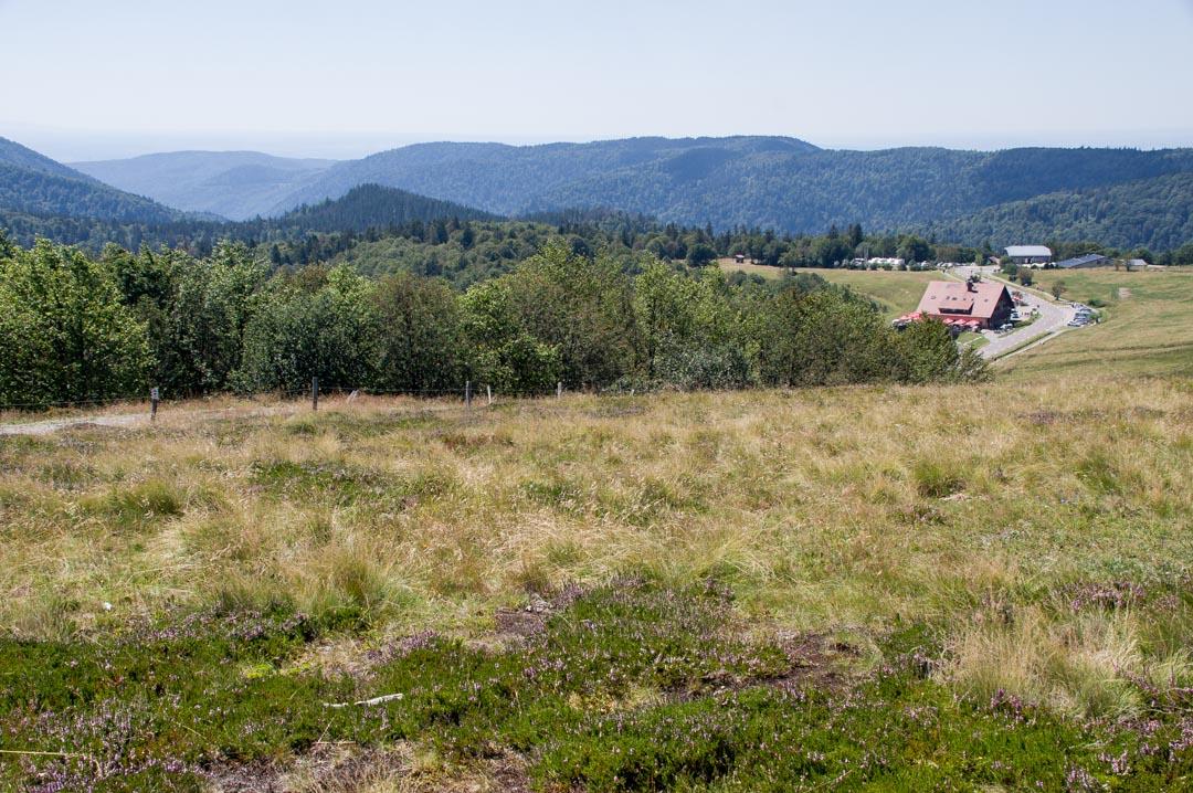 sommet du ballon d'Alsace