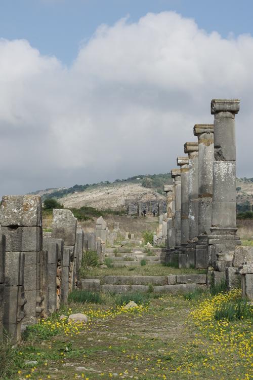 le site antique de Volubilis