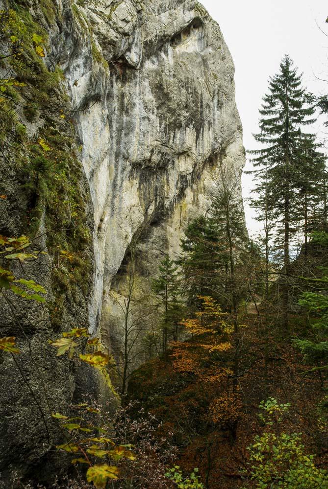 falaise à la sortie des Gorges de Covatannaz en Suisse
