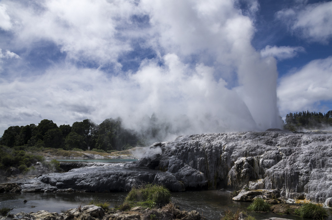 geyser Te Puia à Rotorua