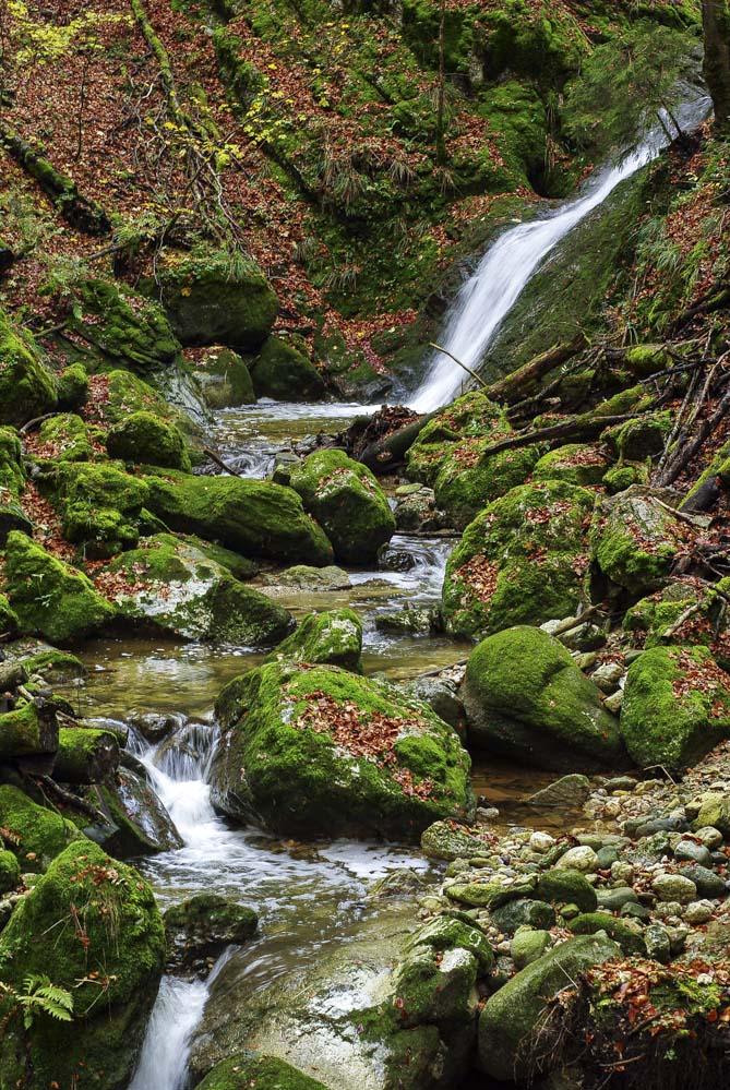 le ruisseau qui dévale les gorges de Covatannaz
