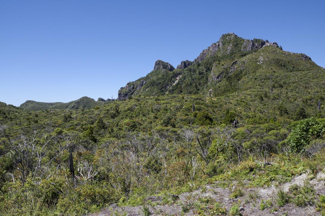 randonnée au Pinnacle de la Péninsule de Coromandel