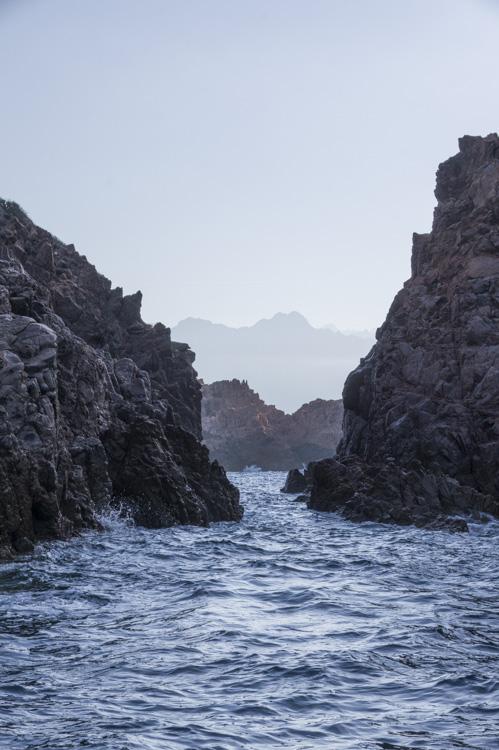 Croisière dans le Golfe de Porto