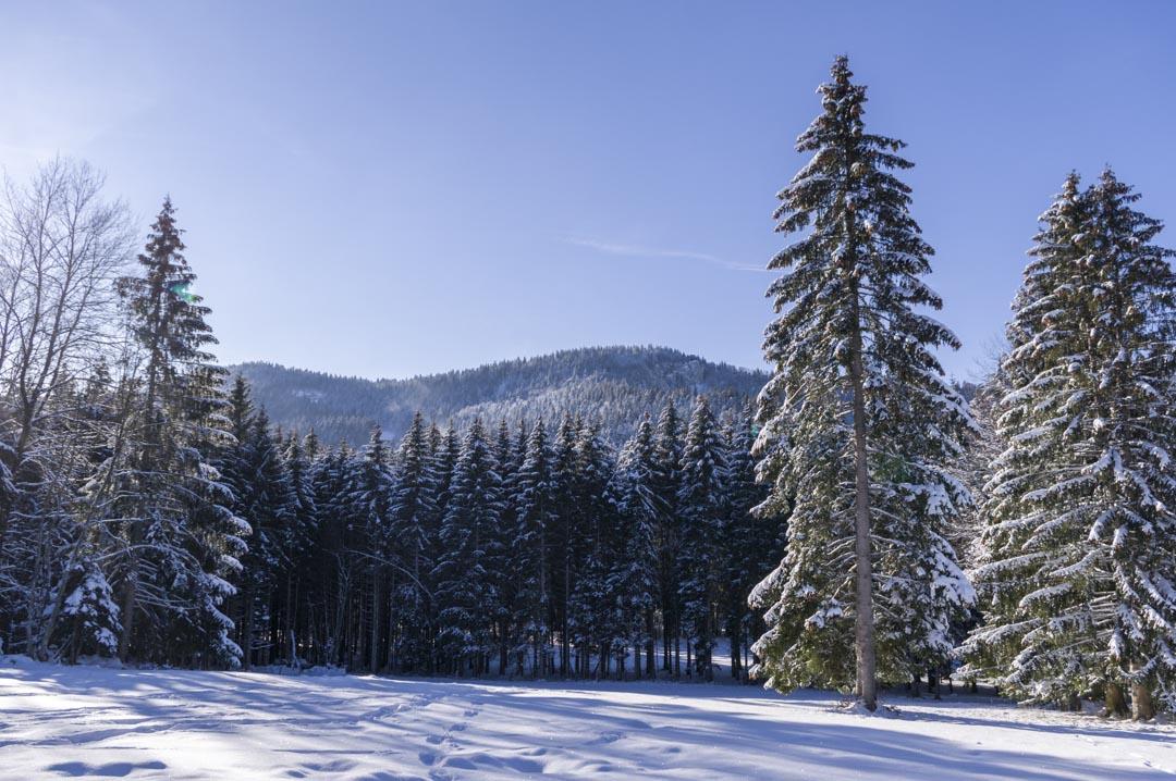 les paysages de Metabief en hiver