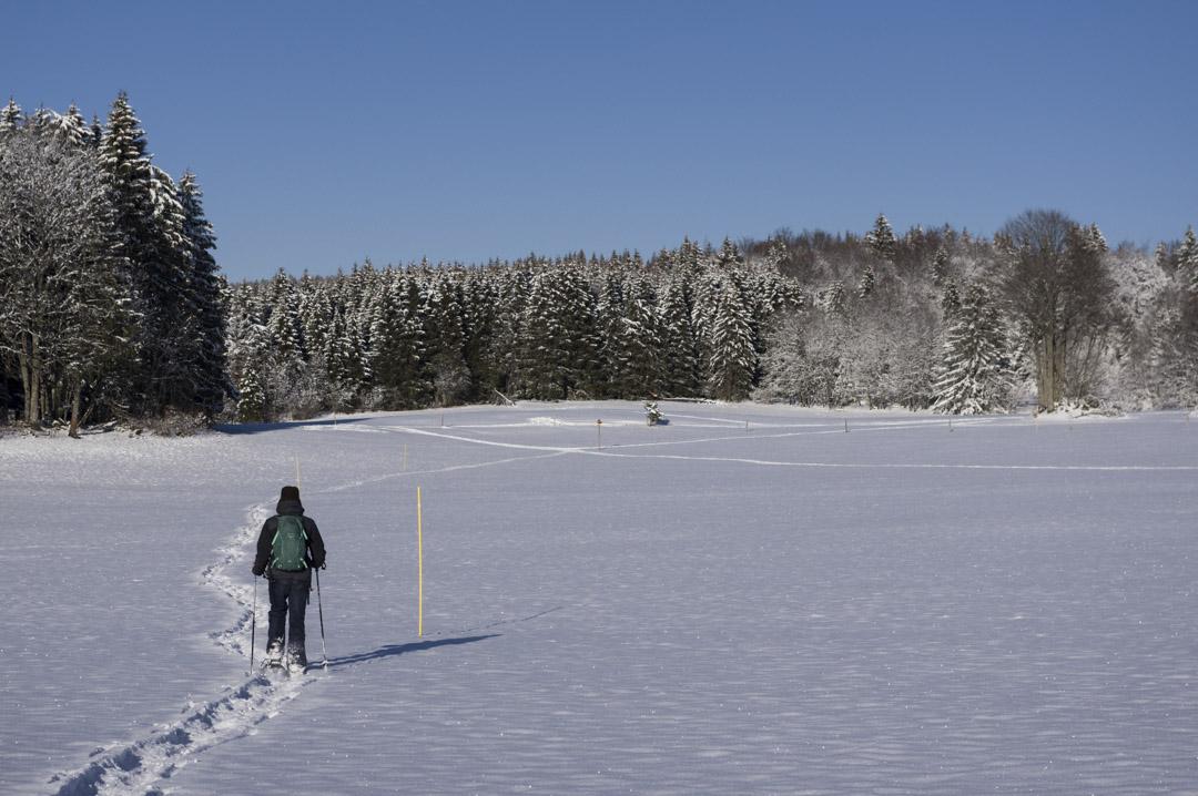 randonnée raquettes au Mont Ramey